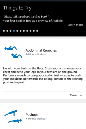 Blogging with Babies Home page showing exercise description on the Alexa App.